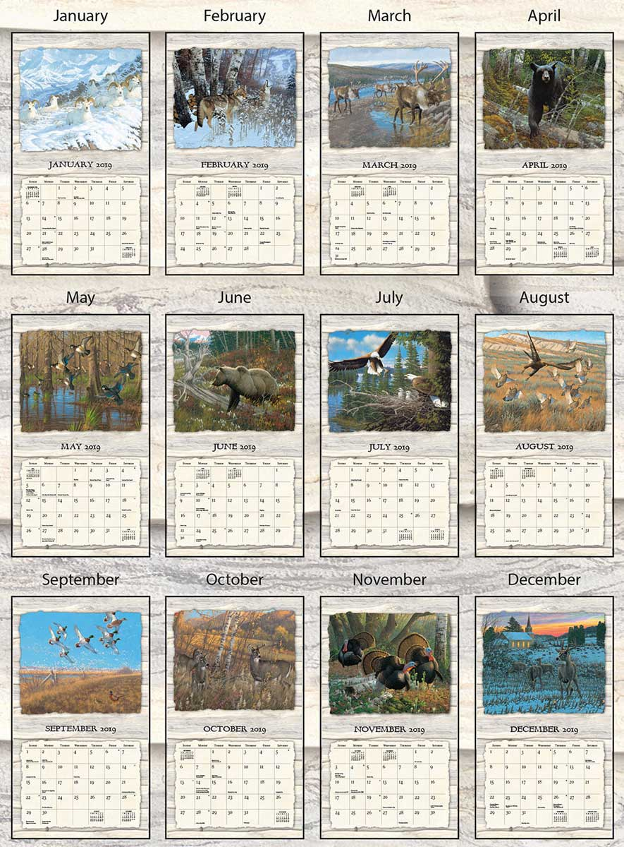 4523535901: Beyond the Woods 2019 Calendar