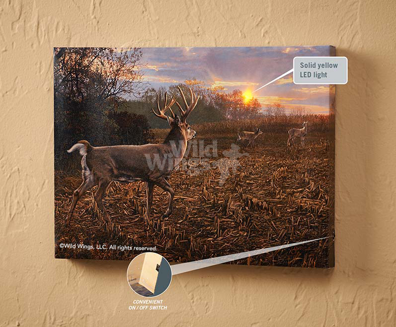 5084411065:&nbsp;<i>Into the Light&mdash;Deer;&nbsp;</i> Lighted Wrapped Canvas